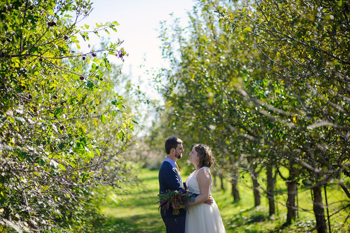 Bride and groom photos in the Sutliff Cider orchard