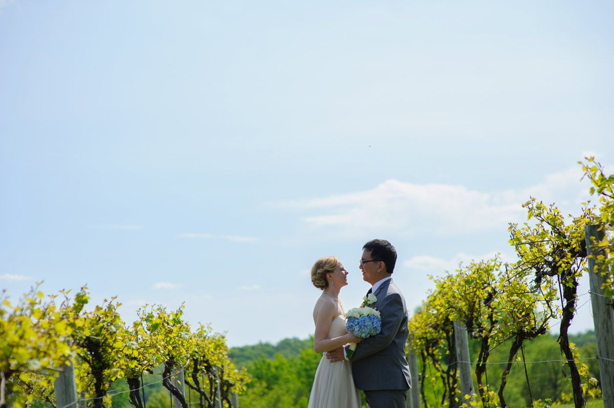 Portrait of the bride and groom in the vineyard