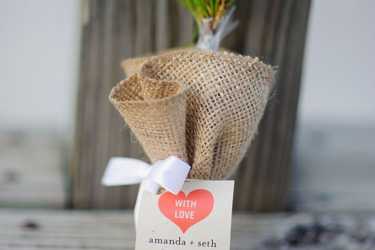 Summerset-Winery-wedding-amanda-seth-355