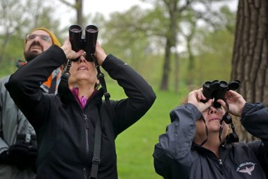Birders turned out in force in 2018, when the village of Riverside marked World Migratory Bird Day with tours along the riverbank to highlight efforts to document bird species stopping in Riverside during their spring migration. The village will host a similar event in May. (File 2018)