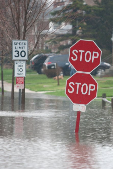 Flood water on Prairie Avenue from the swollen Salt Creek in Brookfield make its way up a stop sign.