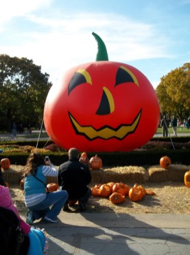 """""""Say, 'Boo!'"""" said parents to their son who sat in front of a giant inflated pumpkin at Brookfield Zoo. (photo courtesy Chris Stach)"""