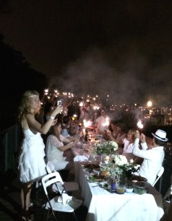 Revelers at Diner en Blanc Chicago 2014 held at the Lincoln Park Zoo