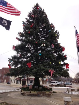 This year's Brookfield Christmas tree was donated by the owner of the former Brookfield Presbyterian Church property. The tree needed to be removed in order for the owner to build a new home there. (Photo by Bob Uphues)