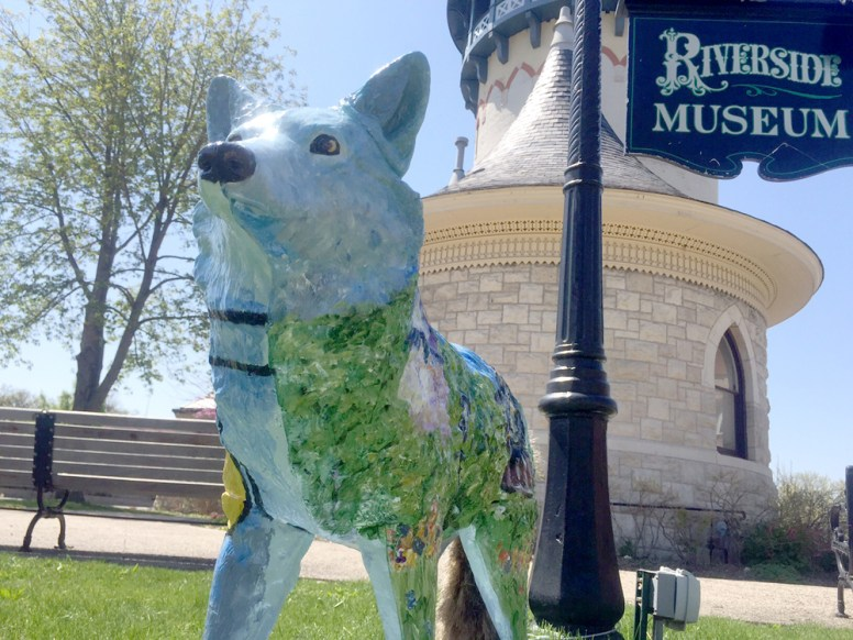 "Grrrrr: Cristina Saldana and Jeff Davis assembled and painted the ""prototype"" coyote %u2014 one of 31 that will appear in downtown Riverside prior to the Riverside Arts Weekend on May 16-17. 