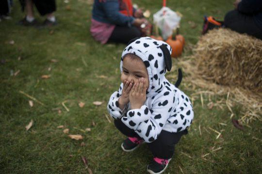 Alondra Mendoza dressed up as a Dalmatian. | William Camargo/Staff Photographer