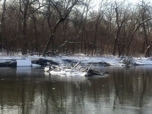 As the ice dam broke up, chunks of still drifted downstream, some carrying debris picked up along the way. (Photo by Bob Uphues)