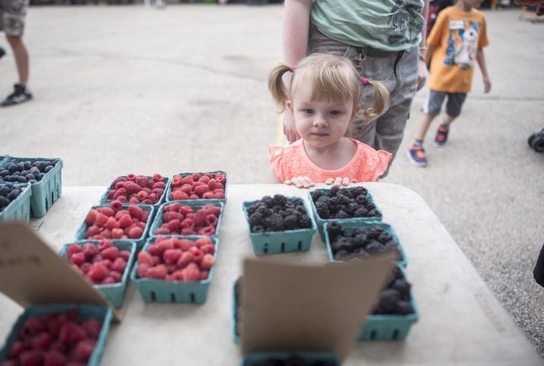Lily Pierce weighs the berry options during the Brookfield Farmers Markets season-opening Saturday on June 4. The market will be held on Saturday mornings through October. | William Camargo/Staff Photographer