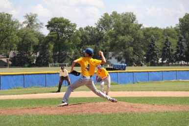 Based on his excellent summer season, LTHS sophomore pitcher Mike Walsh has emerged as a viable starter for the Lions next spring. (Photo by Janet Mitchell)