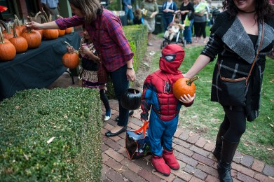 Adrian Perez as Spiderman collects a free pumpkin. | William Camargo/Staff Photographer