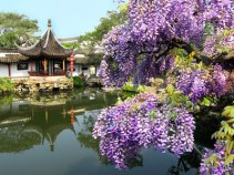 """""""Gardens of China"""" with Ron Henderson"""