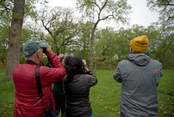 Participants help each other spot a group of birds flying around during a guided tour on World Migratory Bird day, May 12, along the river in Riverside. | Alexa Rogals/Staff Photographer