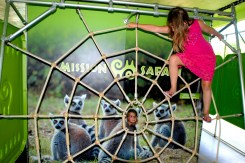 Brookfield Zoo's summer exhibit, Amazing Arachnids, includes interactive challenges and activities, like a climb-on spider web. | Courtesy of Chicago Zoological Society