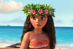 """Riverside Parks and Recreation along with state Rep. Michael Zalewski invite the family to Big Ball Park, Delaplaine and Longcommon roads in Riverside, on July 13 for a free Movie in the Park, featuring the 2016 animated film """"Moana."""""""