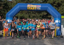 Lace up your shoes for Brookfield Zoo's annual ZooRunRun for the Animal Care and Conservation Fund on Sunday, Sept. 9. | Courtesy of the Chicago Zoological Society