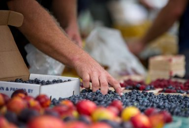 Fresh blueberries and nectarines are displayed for sale on Aug. 29, during the weekly farmers market in downtown Riverside. | Alexa Rogals/Staff Photographer