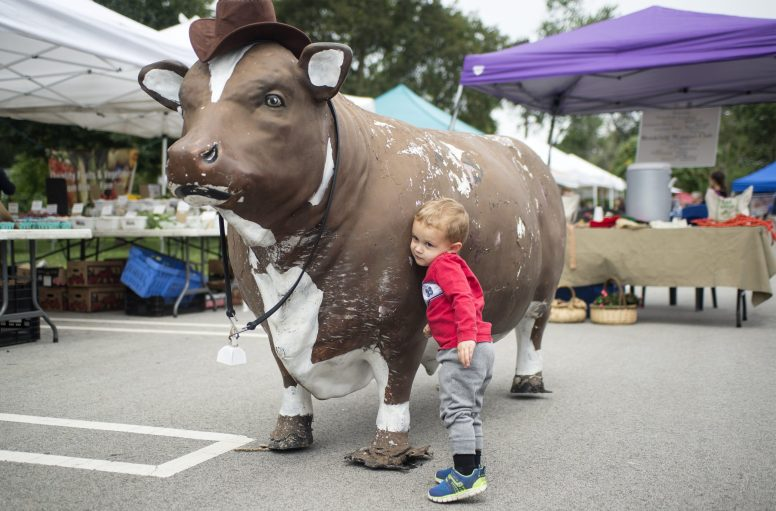 Sebastian Miller, 2, of Brookfield, hugs the cow from Brookfield Restaurant on Sept. 8, during the weekly Brookfield Farmers Market at Village Hall. | Alexa Rogals/Staff Photographer