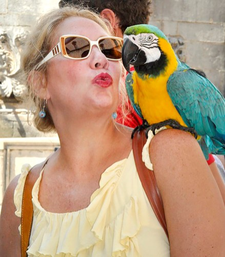 Hesser gets up close with a macaw during a visit to Croatia's Dalmatian coast | Photo by Amanda Booth