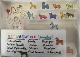 The Doodle Dog Emporium was the art project that inspired the Designer Doodles Puppy Store.