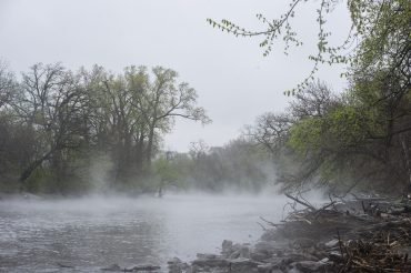 """The Frederick Law Olmsted Society, Riverside Public Library and the Riverside Landscape Advisory Commission present """"Secrets from Very Old Trees"""" on Thursday, May 2 at 7 p.m. in the Great Room of the Riverside Library, 1 Burling Road."""