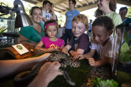 A group of kids take turns petting a snake from the Chicago Herpetological Society with guidance from Michael Scott on Saturday, Sept. 14, during Meet The Creek event at Kiwanis Park in Brookfield.
