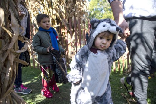 Kids in costumes walk through the corn maze with family on Saturday, Oct. 12, during the Boo At The Zoo event at Brookfield Zoo.