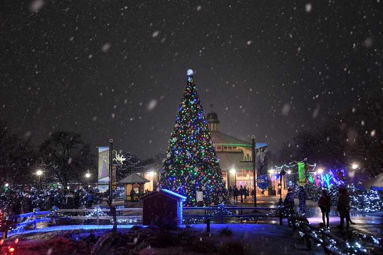 Brookfield Zoo flips the switch on Holiday Magic, its annual festival of lights, this weekend, Nov. 30-Dec. 1.