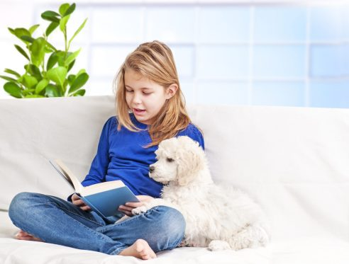 Brookfield Public Library's Youth Services Department invites kids (with caregiver) to participate in a special Read to the Dogs program via Zoom on July 2.