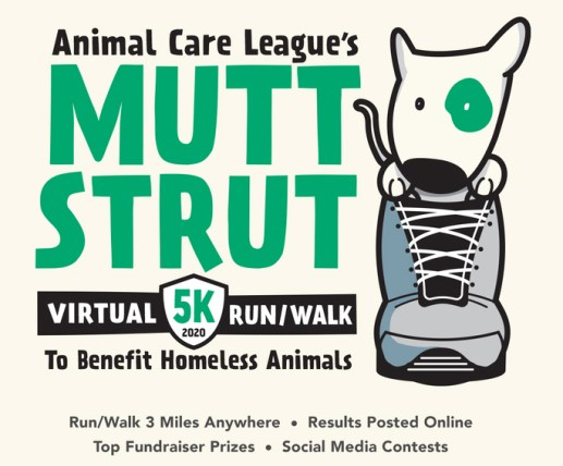 The Animal Care League's annual Mutt Strut 5K Run/Walk to benefit homeless animals is going virtual this year.