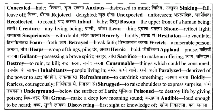 RBSE Solutions for Class 8 English Chapter 6 The Brave Lady of Rajasthan 2