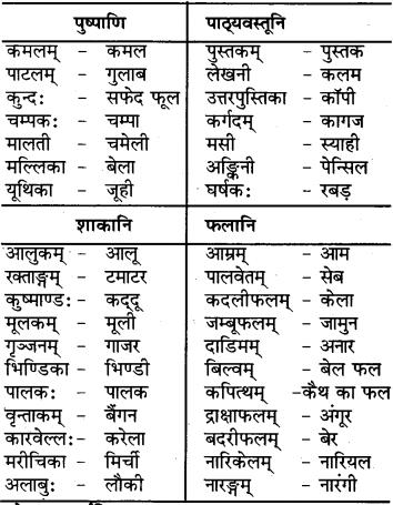 RBSE Class 6 Sanskrit परिशिष्टम् 66