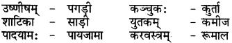 RBSE Class 6 Sanskrit परिशिष्टम् 71