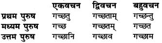 RBSE Class 6 Sanskrit व्याकरण धातु-रूपम् 14