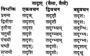 RBSE Class 6 Sanskrit व्याकरण शब्द-रूप प्रकरणम् 38