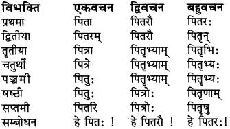 RBSE Class 6 Sanskrit व्याकरण शब्द-रूप प्रकरणम् 6