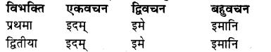 RBSE Class 7 Sanskrit व्याकरण शब्द रूप प्रकरणम् 21