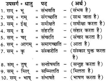 RBSE Class 8 Sanskrit व्याकरण उपसर्ग - 3