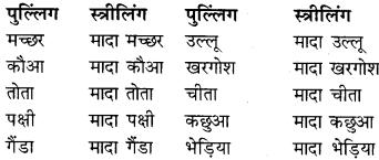 RBSE Class 9 Hindi व्याकरण लिंग 12