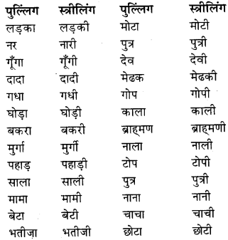 RBSE Class 9 Hindi व्याकरण लिंग 2