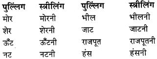 RBSE Class 9 Hindi व्याकरण लिंग 3