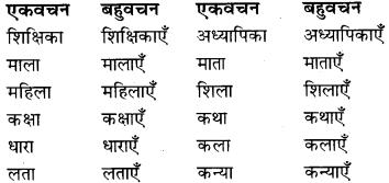 RBSE Class 9 Hindi व्याकरण वचन 3