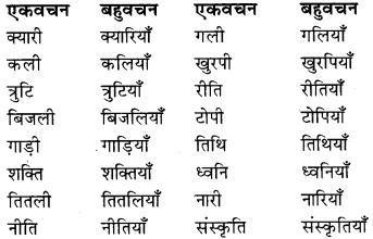 RBSE Class 9 Hindi व्याकरण वचन 4