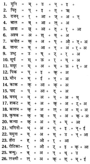 RBSE Class 9 Hindi व्याकरण वर्ण विचार एवं आक्षरिक खण्ड 3