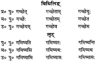 RBSE Class 9 Sanskrit व्याकरणम् 44