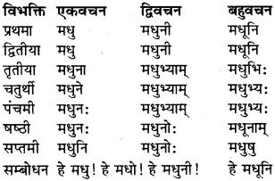 RBSE Class 9 Sanskrit व्याकरण रूप-प्रकरणम् 15
