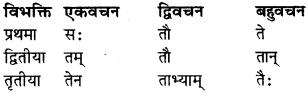 RBSE Class 9 Sanskrit व्याकरण रूप-प्रकरणम् 16