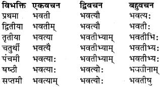 RBSE Class 9 Sanskrit व्याकरण रूप-प्रकरणम् 31