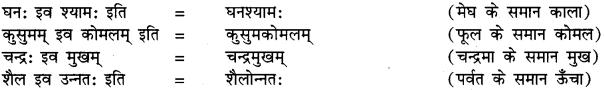 RBSE Class 9 Sanskrit व्याकरण समास-प्रकरणम् 11