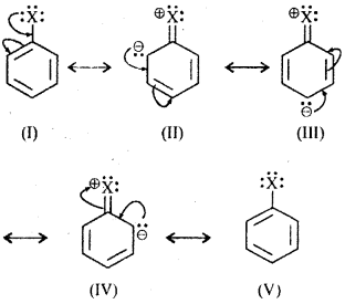 RBSE Solutions for Class 12 Chemistry Chapter 10 272