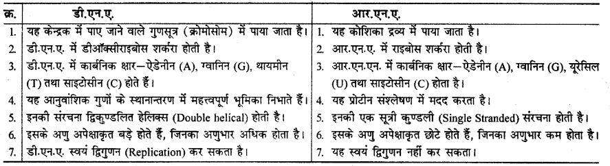 RBSE Solutions for Class 12 Chemistry Chapter 14 जैव-अणु image 3